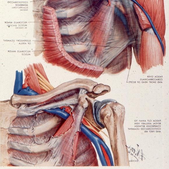 handcrafted Accessories - Vtg Medical Slide Photo Viewer Keychain shoulder